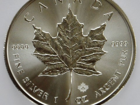 2016 Canadian Maple Leaf 1 ounce Silver bullion Coin