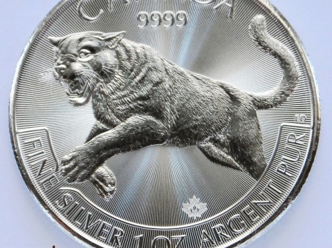 2016 Canadian Cougar 1 oz Silver Bullion Coin