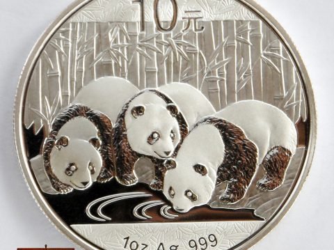 2013 Chinese Panda 1 oz 999 Silver Bullion Coin