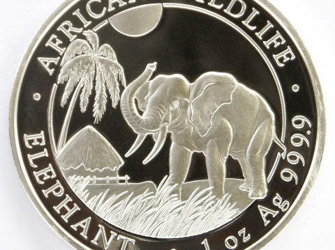 2017 Somalian Elephant 1 ounce Bullion Coin