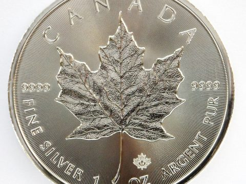2017 Canadian Maple Leaf 1 oz Silver Bullion Coin