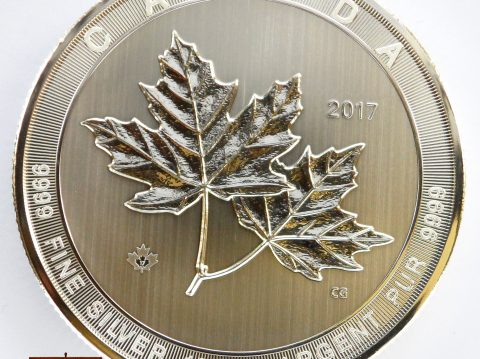 2017 Canadian 10 oz Magnificent Maple Leaf Silver Bullion Coin