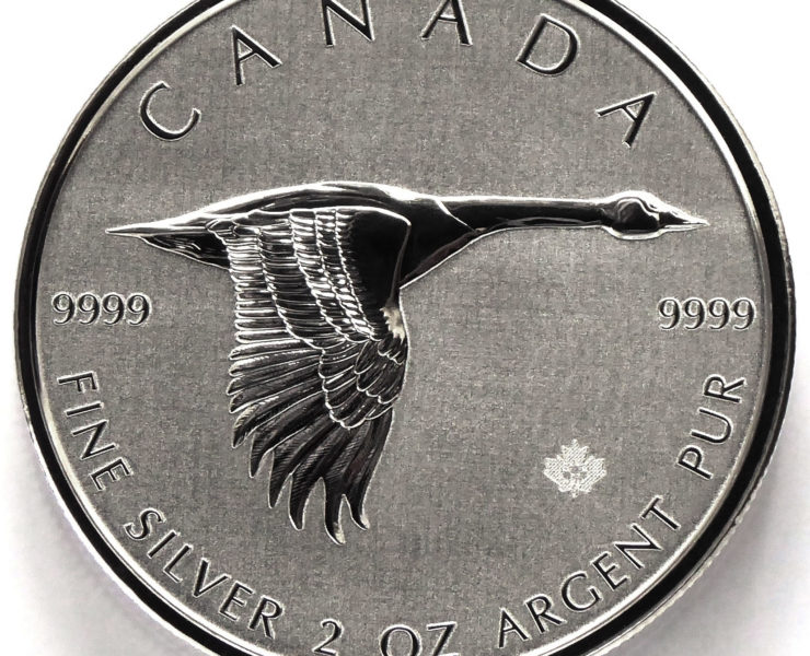 2020 Canadian Goose 2oz Silver Bullion Coin